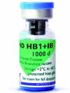 AVI ND HB1+IB