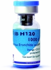AVI IB H120